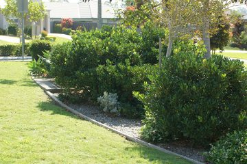 Landscaping And Garden Makeover Melbourne Northern Suburbs